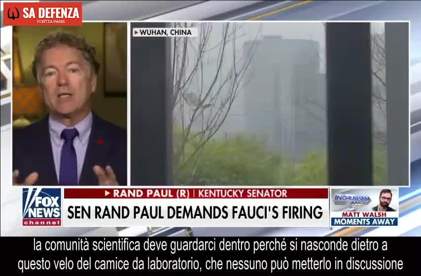 Senatore Rand Paul: il Dr. Fauci fin dall'inizio aveva finanziato la ricerca sul guadagno di funzione